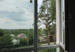 Окно с нижней фрамугой